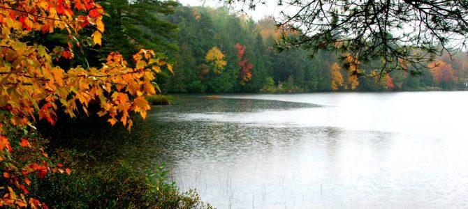 Prêts pour le printemps: ensemencement des lacs Boyd et Curran.