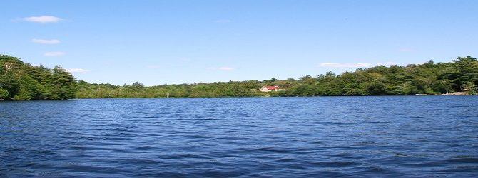 Enfin, voici les résultats de nos lacs. Ils sont très bons. Mais…