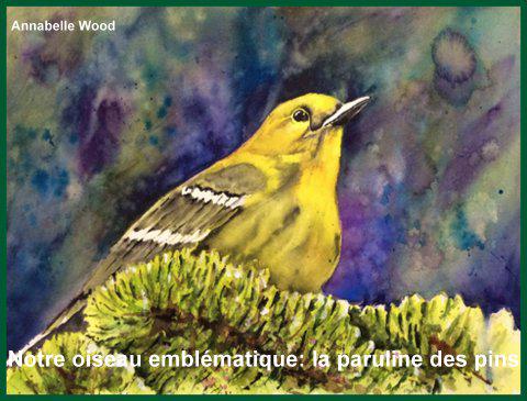 https://www.dunany.ca/wp-content/uploads/2018/02/oiseau-emblematique-full-fr.png