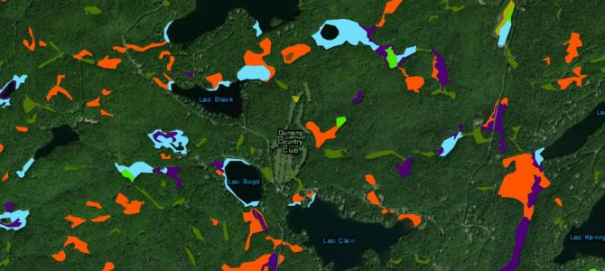 Dunany Wetlands: find out where they are around your lake.